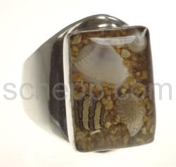 Ring mit echten Muscheln in Kunstharz, rechteckig
